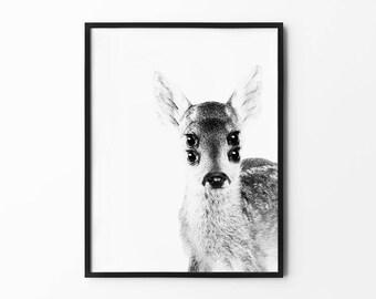 Gazelle Print, Baby Deer Wall Art, Black and White, Nursery Wall Decor, Nature Art, Photography, Natural Decor, Minimalist, Animal Portrait