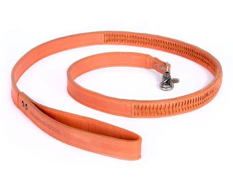The MALIBU  Dog Leash!!!   Super minimal and cool design is our favorite modern dog accessories collection.