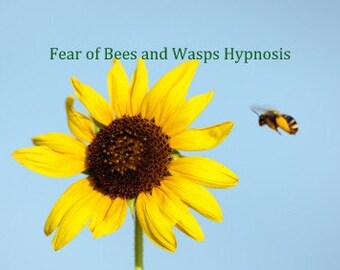 Cure  Bee  and  Wasp Phobia Apiphobia Hypnosis mp3 Download.