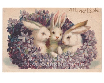 Digital Download Vintage Adorable Easter Bunny, Bunnies Greeting Card Image plus ready to make Greeting Cards, Gift Tags & More!
