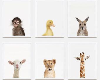 Baby Animal Nursery Art Print: Giraffe Little Darling.