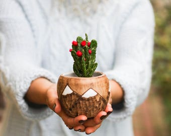 Succulent planter Ceramic planter Mountain mug Flower pot Indoor planter Small succulent pot Small vase Cactus pot Mini planter Christmas