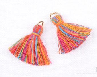 T002-CO-MR// Multi Rainbow Cotton Tassel Pendant, 4pcs, 23mm