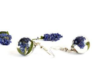 Sphere shape terrarium earrings with real blue flowers Floral resin earrings