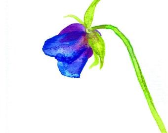 Blue Poppy Painting ,  Blue Poppy Original Matted Watercolor Painting , Original Watercolor