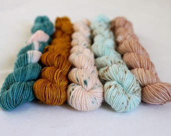 Hatchling Mini-Skein Set - 5 x 20g - 75/25 superwash merino/ nylon sock yarn