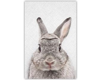 Rabbit Print, Bunny, Woodland, Nursery Decor, Baby Animal Art, Peekaboo, Large Canvas, Poster