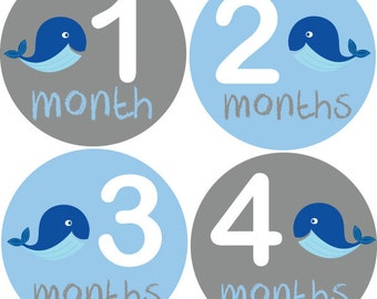 Baby Month Stickers, Monthly Baby Stickers, Monthly Milestone Stickers, Baby Monthly Stickers, Baby Belly Stickers, Baby Boy Whale