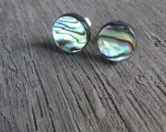 Abalone Stud Earrings stainless steel Paua Shell post earrings silver 12 mm