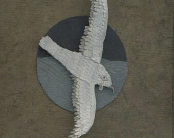 Albatross Greeting Card