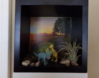 dinosaur diorama, airplant diorama, living wall art, airplant holder, unique airplants