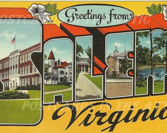 Salem Virginia Large Letter State Souvenir  - Magnolia - 1960's Vintage Postcard