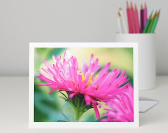 Bright Pink Aster Flower Photo Note Card, floral photography stationery blank notecard, nature photo greeting card, a2 or a7