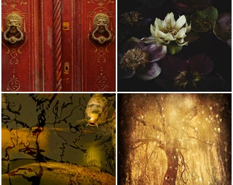 Red and Black Set, Photography Set, Set of Four, Asia, Gold, Koi, Lotus, Zen Decor, Meditation Room, Tree of Life, Rustic Old Door, Photo