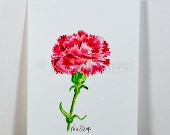 Carnation watercolor painting / ten most interesting flower series / Original watercolor / flower painting 5 x 7