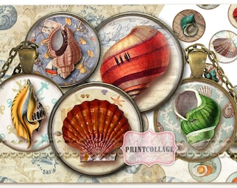 Sea Shell Digital Collage Sheet Cabochon images 1.5 inch 18mm 14mm 1inch circle Printable images Instant download bottle caps C06
