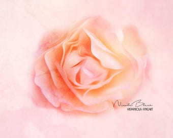 salmon colored Rose, Rose Photo, Flower closeup, Floral Print, Botanical Wall Art, Flowers, Nature Wall Art, Flower Photography, Wall Art