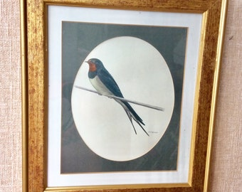 Swallow painting