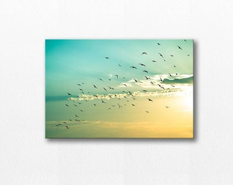 canvas art birds in flight wall art 20x30 birds photography nature canvas print birds flying canvas gallery wrap fine art photo nursery