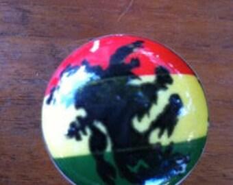 Hand Painted Rasta Ceramic Knob