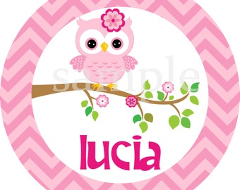 Personalized Pink Owl Kids Chevron Melamine Plate Gift