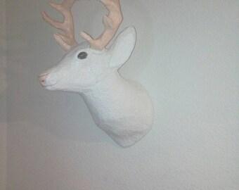 Deer albino
