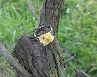 Vegetable immortal flower ring