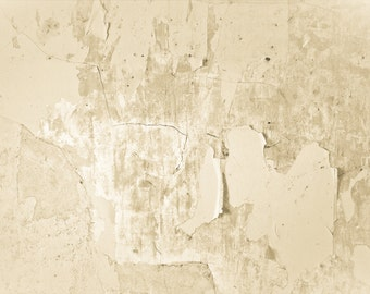 Abstract Photography, weathered wall, peeling paint, neutral, rustic, primitive, Modern Home Decor, Fine Art Print