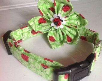 Green Ladybug Dog & Cat Flower Collar