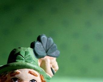 Lucky Leprechaun  - Photograph - Various Sizes