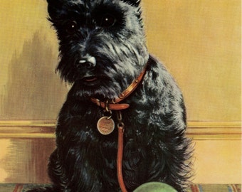 Vintage Dog Print Terrier Puppy by Winifred Martin C. 1953 Vintage Decor Matted 11x14""