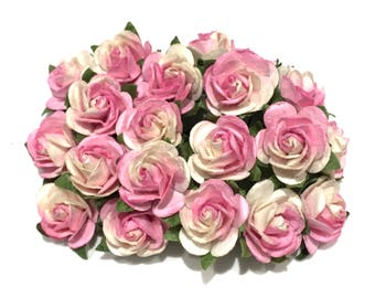 Pink And White Open Rose Or045