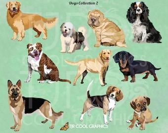 Dogs Set 2 Digital Realistic Clip Art, PNG, Printable, Sharpei, Dachshund, Golden Retriever, Beagle, Pit Bull, German Shepherd, Mastiff