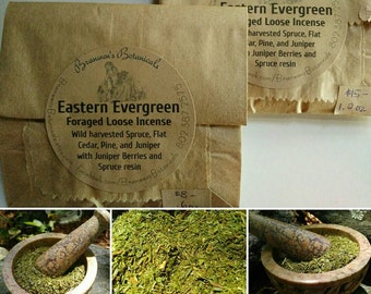 Eastern Evergreen Foraged Loose Incense