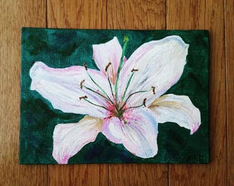 """White lily, canvas board, acrylic painting (5""""x7"""")"""
