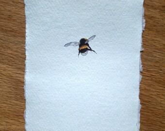 Fine art print of a bumblebee