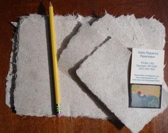 6 x 8 inch crisp and thin handmade paper of iris leaves