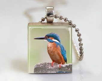 Orange Blue Bird Nature - Scrabble Pendant Necklace with Ball Chain Necklace or Key Ring