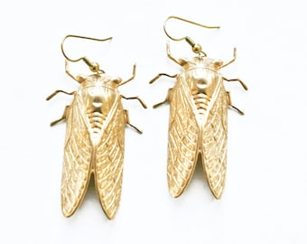 Giant Cicada Earrings / Brass / Gift