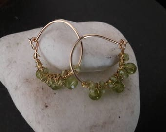 Goldfilled earrings with peridot nr 37