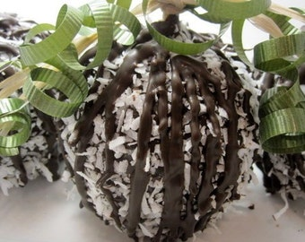 4-Pack Coconut Chocolate Covered Apples