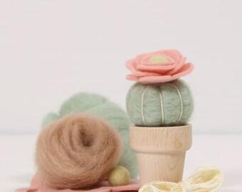Needle Felting Kit // Desert Rose // Needle Felting Kit, Cactus Craft, Desert DIY Craft Kit, Roving, Felting Kit, Cacti Kits, Benzie Design