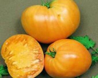 Orange Oxheart Tomato seeds