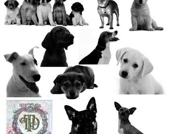 10 Dog & Puppy Digital Stamps Set 2