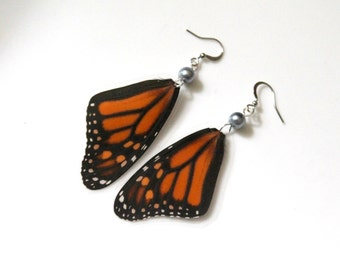 Real Butterfly Earrings, Monarch Butterfly with Grey Glass Pearl, Natural History Jewelry