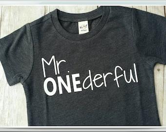 Mr. ONEderful tee shirt,  boy's birthday shirt, first birthday, 1st birthday shirt, baby boy shirt