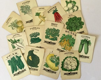 Garden Seed Packs Vintage Lithograph Vegetable Herb Packets Set of 3
