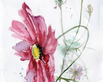 Original flower WATERCOLOR, Garden Cosmos flower painting