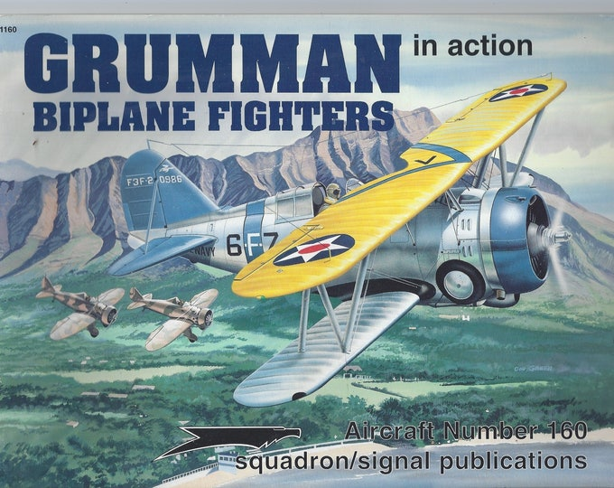 Grumman Biplane Fighters in action - Aircraft No. 160 (Paperback)