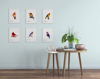 Bird Art Prints- Colorful - Art Prints - Choose Six